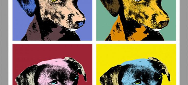Collage von Leni – frei nach Warhol